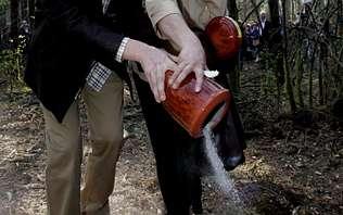 Los concellos eluden regular el esparcimiento de cenizas mortuorias