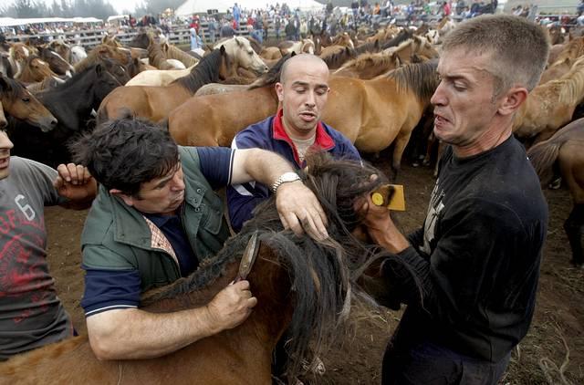 http://media.lavozdegalicia.es/default/2010/06/28/00121277709388192384912/Foto/.jpg