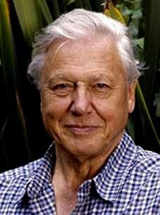 El naturalista británico David Attenborough recoge este jueves el Premio Fonseca