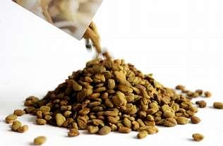 Las semillas del brote de �E. coli� tambi�n se vendieron en Espa�a