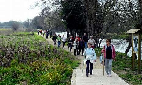 Los Amigos del Camino tomarán la variante de O Salnés en su peregrinación a Santiago de Compostela.
