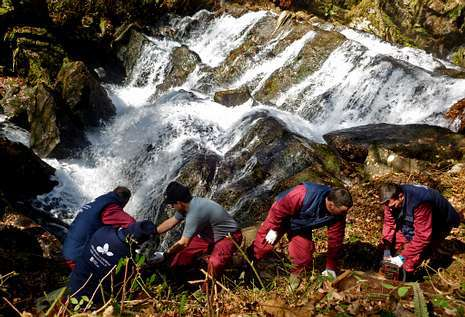 Val do Dubra quiere promocionar la fervenza de Ínsua tras acondicionar su entorno.