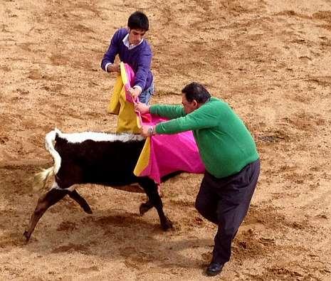 Algún sarriano demostró su valentía saltando al ruedo para torear a las vaquillas