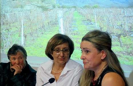 Esther Teijeiro, Ana Casal y María José Yrabedra, ayer frente a la fotografía de un viñedo