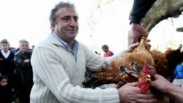 La pareja de gallos se lleg� a pagar a 48 euros FOT�GRAFO: MARTINA MISER