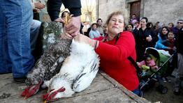 Las Poxas de San Benito de Lores son uno de los acontecimientos ineludibles de la comarca FOT�GRAFO: MARTINA MISER