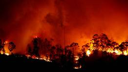 El incendio forestal ha quemado ya cerca de doscientas hect�reas de monte.