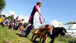El aire libre favorece la estabilidad de los animales FOT�GRAFO: MARTINA MISER