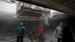 """El calamar patag�nico es uno de los productos estrella de Marfr�o, galardonado con los premios """"Sabor del a�o 2012"""" FOT�GRAFO: RAMON LEIRO"""