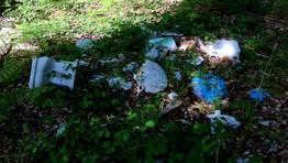 Sanitarios y otros residuos pueden verse en la carballeira pr�xima al colegio Gal�n, pero no es esta la �nica zona verde en la que hay vertederos incontrolados FOT�GRAFO: CEDIDA
