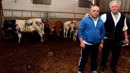 Tratantes de ganado, Luis Font�n Castro y Luis Font�n Lago FOT�GRAFO: MARTINA MISER