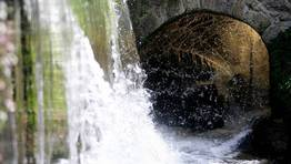 el agua es el elemento fundamental en la Finca Galea, FOTÓGRAFO: XAIME RAMALLAL