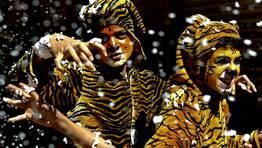 Ni�os disfrazados de tigres participan en la campa�a �Salvemos nuestro Tigre� en Bangalore, en el sur de la India. FOT�GRAFO: JAGADEESH NV   EFE