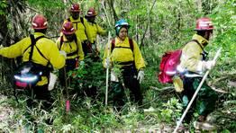 Trabajadores de la Nasa buscan restos del Columbia en una zona boscosa. FOTÓGRAFO: NASA