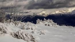 Nevada del mi�rcoles en montes de A Pobra do Broll�n FOT�GRAFO: CARLOS RUEDA