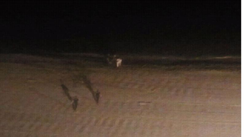 Al fondo, se puede ver a la joven a pocos metros del agua y dos agentes del 091 en la arena.
