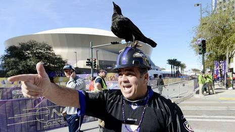 Un seguidor de los Ravens ERIK S. LESSER | Efe