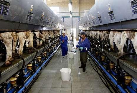 La industria láctea impone su ley